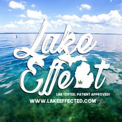 Lake Effect Logo
